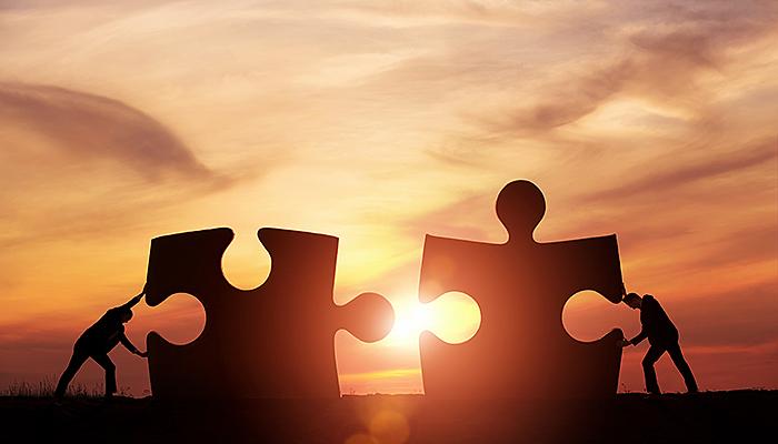 iaap-partnership